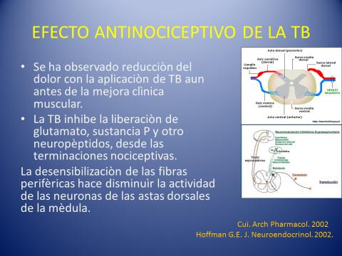 Fig. 3 Efecto Antinociceptivo de la Toxina Botulínica.